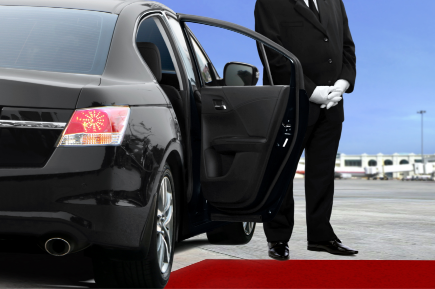 Personal driver for medical travel services korea