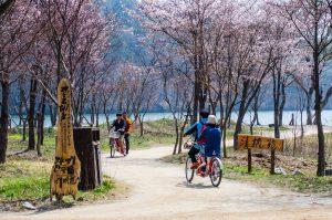 Visit Korea : Chuncheon